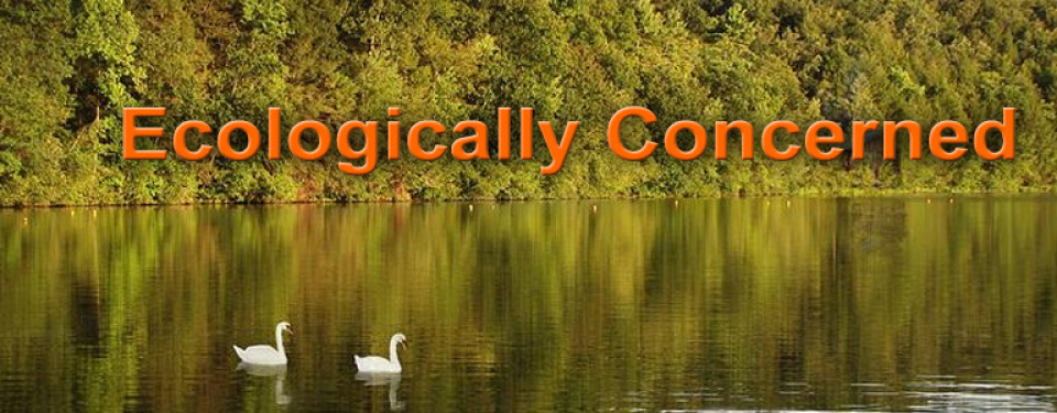 Ecologically-Concerened3