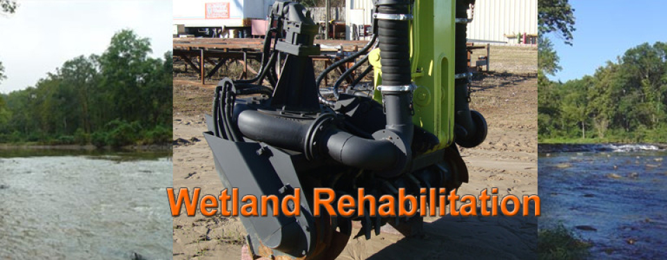 Wetland-Rehabilitation